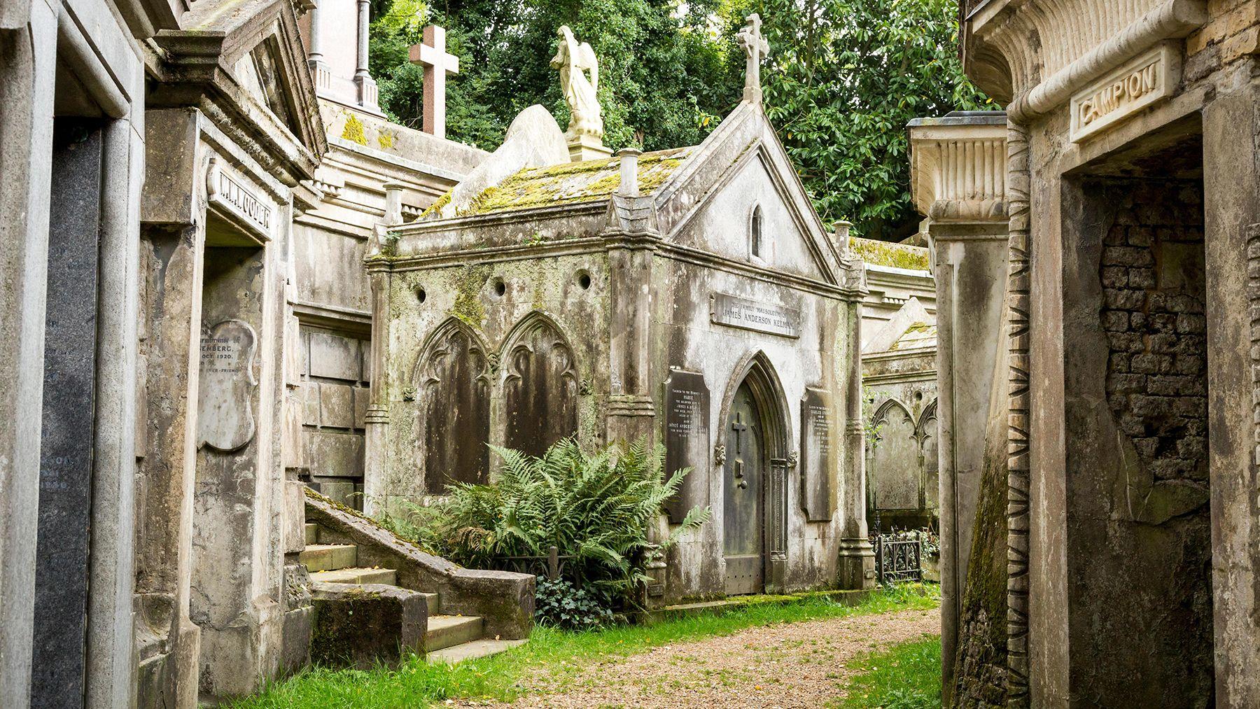 Stockdale Progress to Next Stage of Highgate Cemetery Masterplan